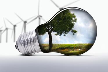 Essay arguments + environmental protection